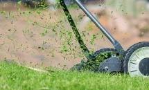 טיפים לבחירת מכסחת דשא