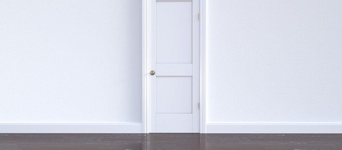 דלתות פנים פולימריות